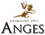 anges_logo